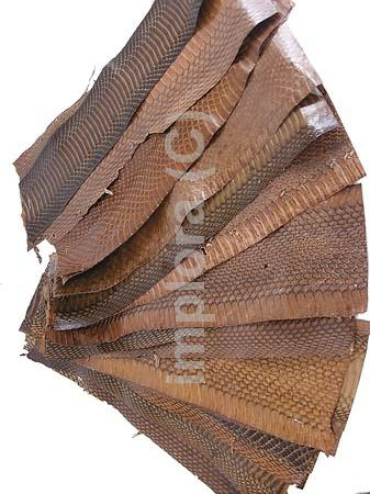 Leather Mixed Brown Cobra Snake Skin Scraps
