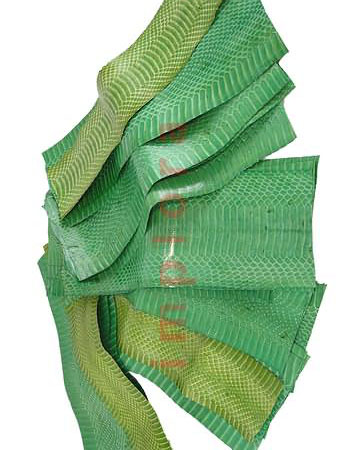 Leather Snake Skin Scraps Pieces Assorted Green