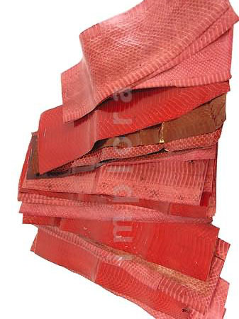 Leather Snake Skin Scraps Pieces Assorted Red