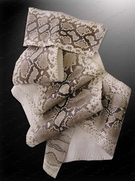 Implora Natural Python Snakeskin Large