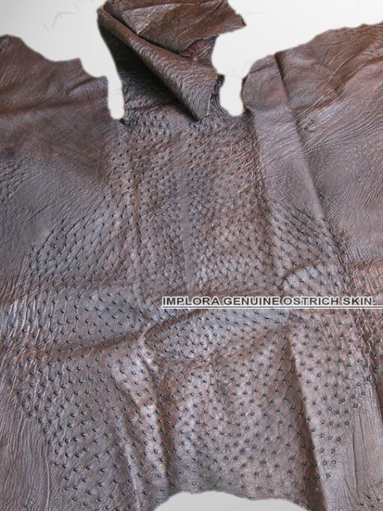 Implora Ostrich Skin Dark Brown 68x58 in
