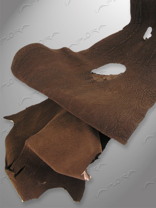 Shark Leathers Implora Brown Shark Skin Leather Hide